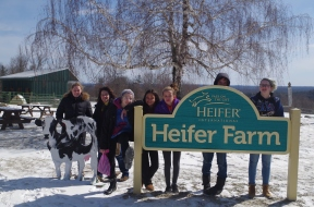 Our recent trip to Heifer Farm in Rutland, MA